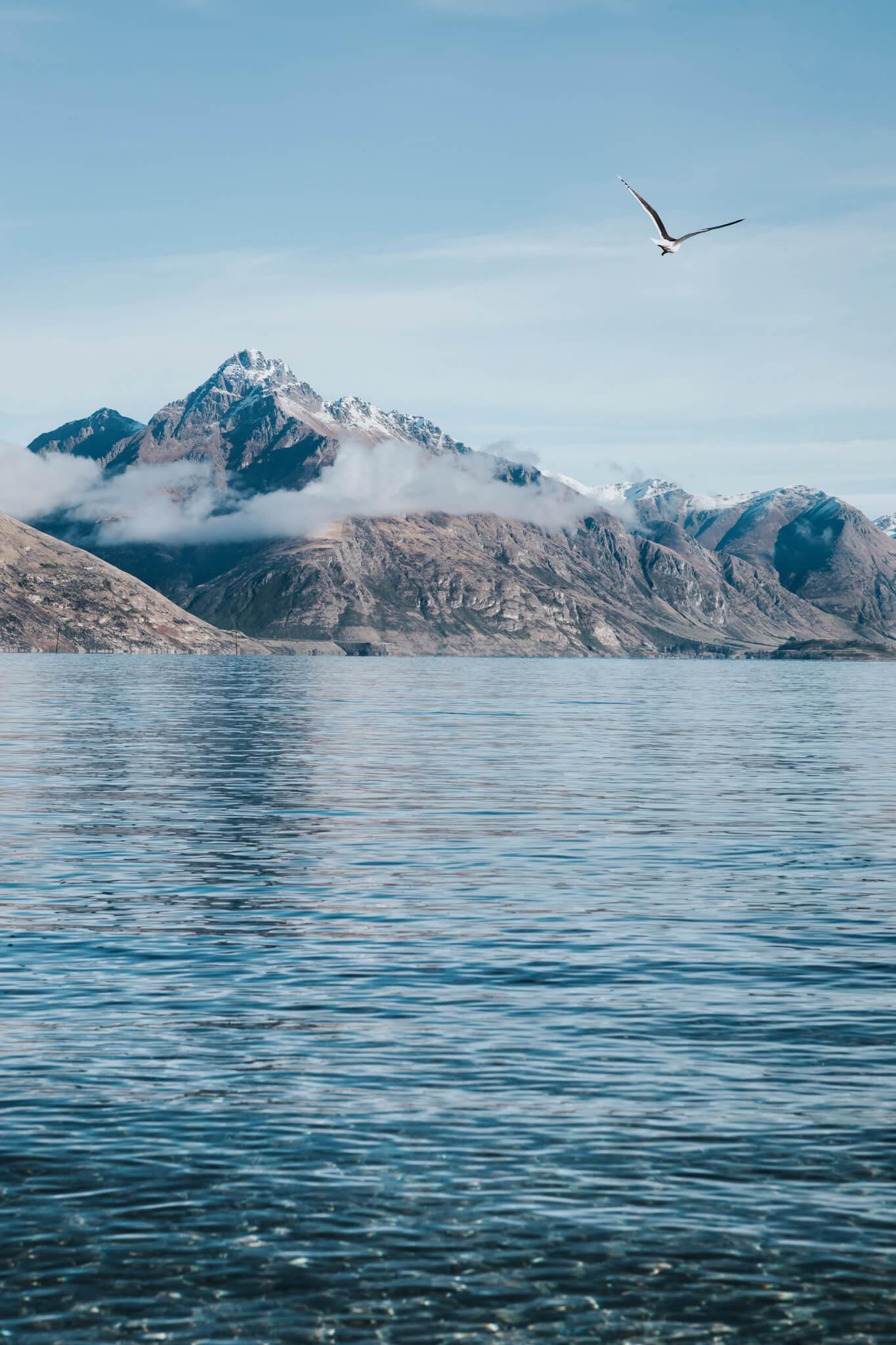 New-Zealand-Travel-Photography-Natalie-Skoric-1.jpg