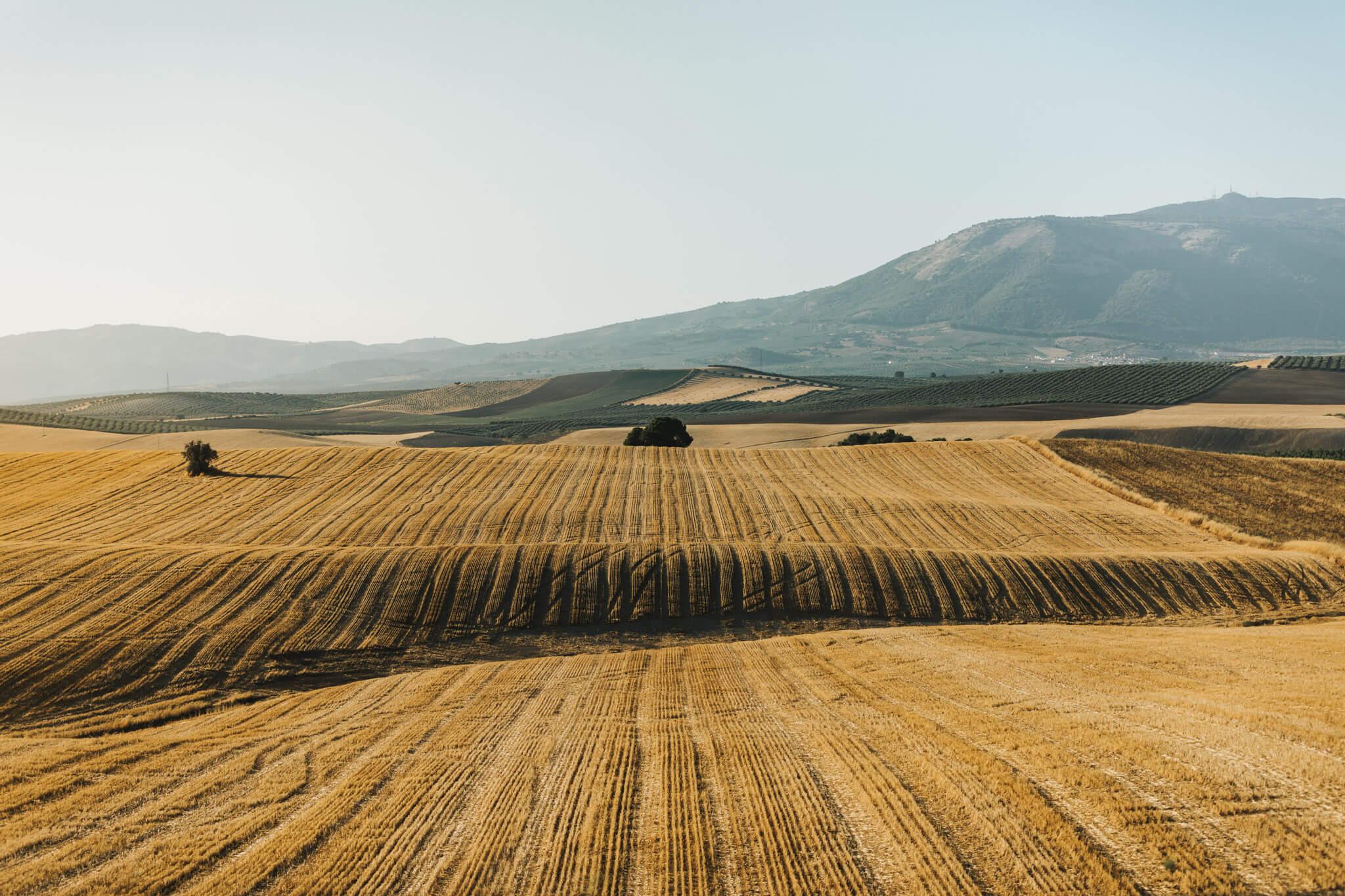 Spain-Travel-Photography-Natalie-Skoric-1.jpg