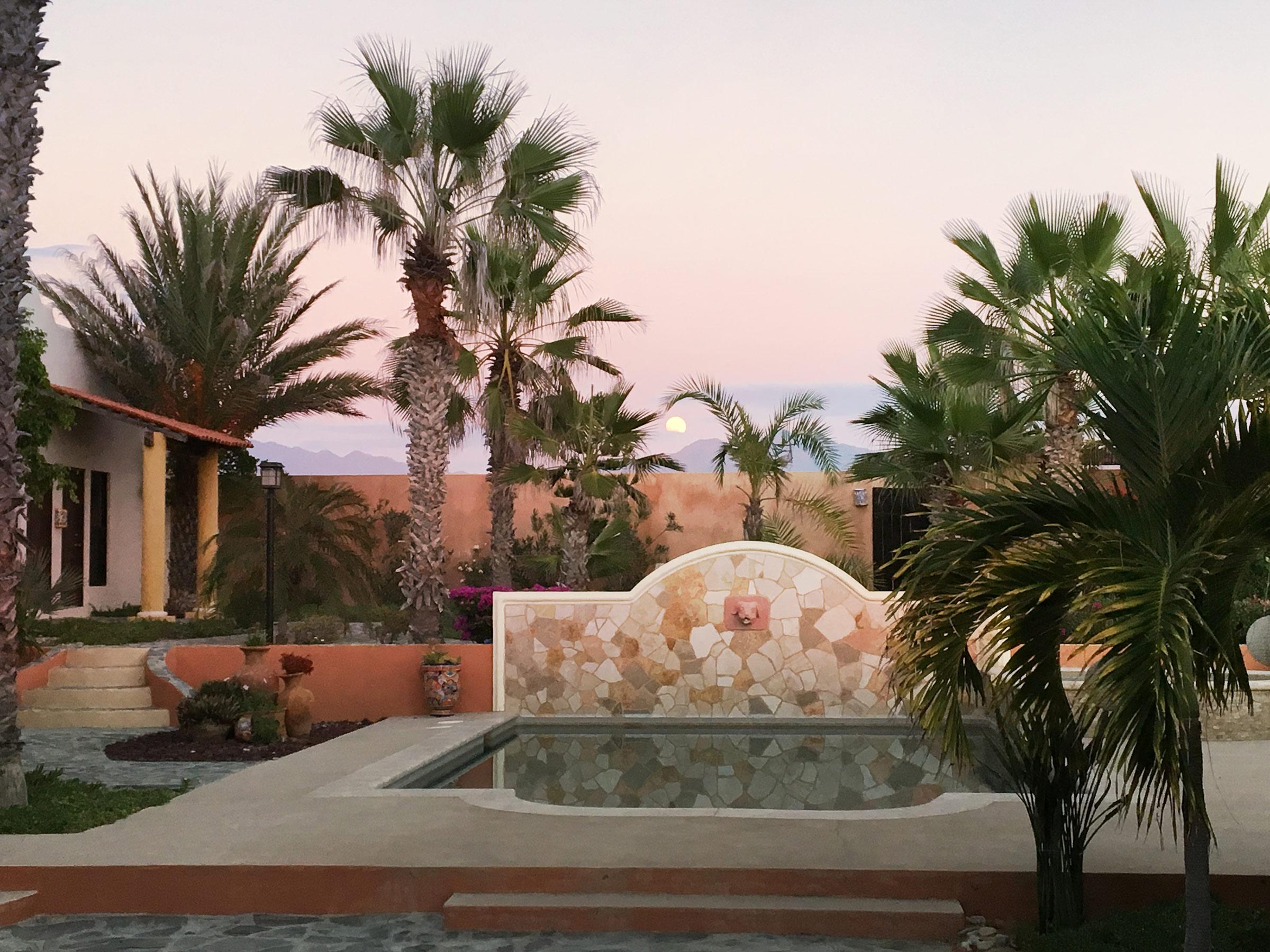 courtyard-moonrise.jpg
