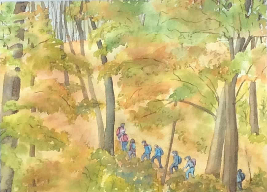 "Bruce Trail Fall Hike, Watercolour, 14"" x 12"""