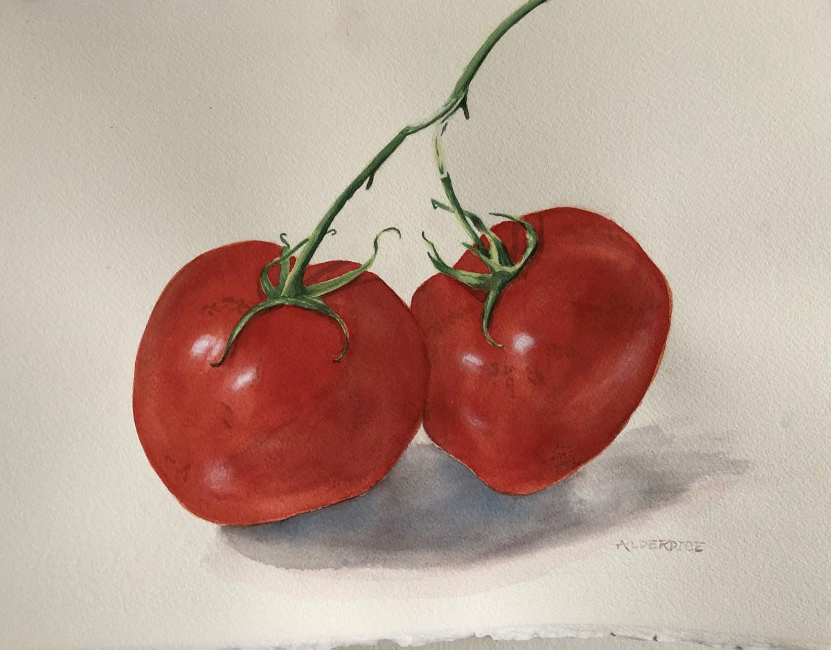 "Juicy Tomatoes 15"" x 11"" Watercolour"