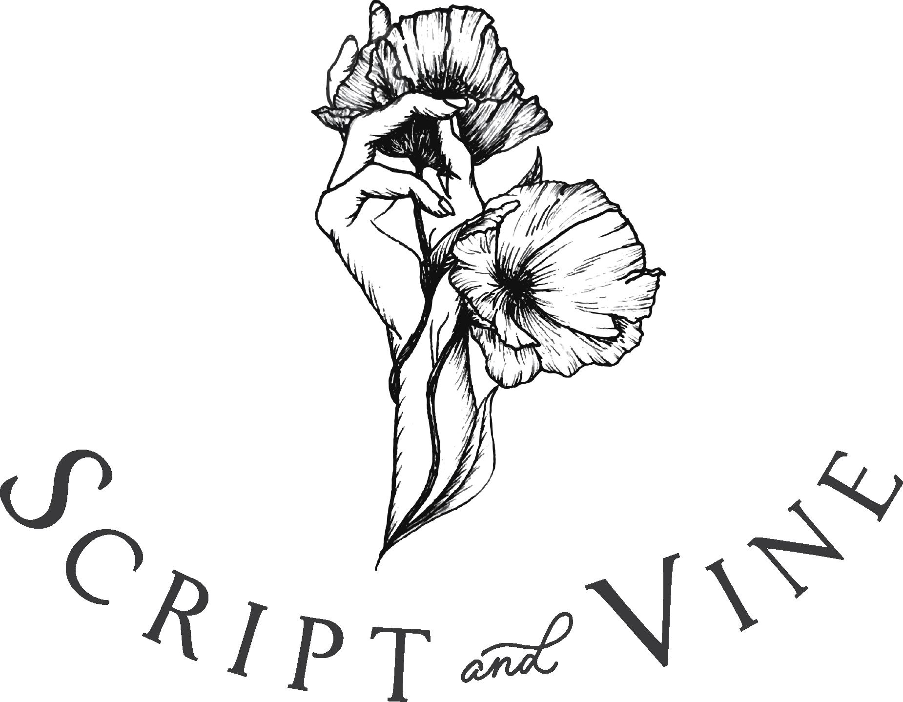Script + Vine