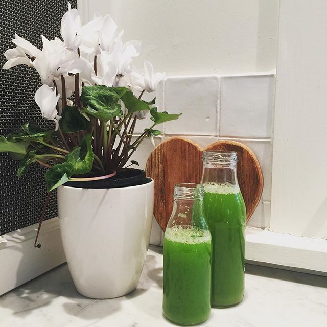 N O U RI S H  Celery juice for the win.  One whole celery makes me about 1 litre of juice. All day hydration, mineral salts, and all the goodness. Who's juicing today? #celery #juice #health #cleaneating