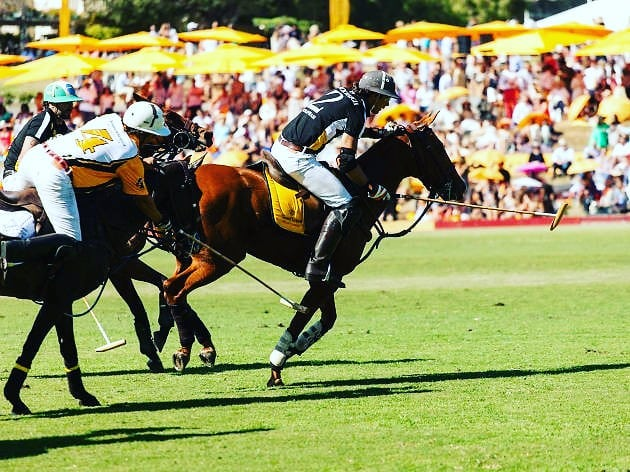 Wanna Enjoy The 10th Annual Clicquot Polo Classic, Los Angeles,On Saturday, October 5, 2019!!!! Contact Me For Your Future Experience ↕↕↕↕↕↕↕↕↕↕↕↕↕↕↕ www.Averageguyexperience.com . ↕↕↕↕↕↕↕↕↕↕↕↕↕↕↕ tickets.averageguyexperience.com . . #averageguyexperience 🏆 #crowd #toptags #score #sports #fitness #gym #train #health #sportsbrav #winner #trainers #best #trainstation #somuchfun #training #loveit #traintracks #justdoit #active #excercise #instasport #sportscar #sporty #workout #healthy #healthyliving #healthyeating #instasport #healthylifestyle #fitnessmodel