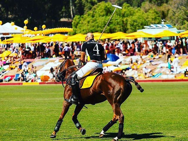 Wanna Enjoy The 10th Annual Clicquot Polo Classic, Los Angeles,On Saturday, October 5, 2019!!!! Contact Me For Your Future Experience ↕↕↕↕↕↕↕↕↕↕↕↕↕↕↕ www.Averageguyexperience.com . ↕↕↕↕↕↕↕↕↕↕↕↕↕↕↕ tickets.averageguyexperience.com . . . . #averageguyexperience 🏆 #crowd #toptags #score #sports #fitness #gym #train #health #sportsbrav #winner #trainers #best #trainstation #somuchfun #training #loveit #traintracks #justdoit #active #excercise #instasport #sportscar #sporty #workout #healthy #healthyliving #healthyeating #instasport #healthylifestyle #fitnessmodel