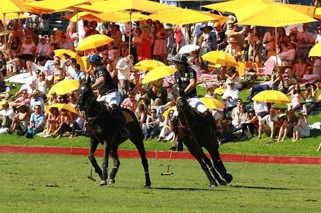 Wanna Enjoy The 10th Annual Clicquot Polo Classic, Los Angeles,On Saturday, October 5, 2019!!!! Contact Me For Your Future Experience ↕↕↕↕↕↕↕↕↕↕↕↕↕↕↕ www.Averageguyexperience.com . ↕↕↕↕↕↕↕↕↕↕↕↕↕↕↕ tickets.averageguyexperience.com . . . . #averageguyexperience 🏆 #crowd #toptags #score #sports #fitness #gym #train #health #sportsbrav #winner #trainers #best #trainstation #somuchfun #training #loveit #traintracks #justdoit #active #excercise #instasport #sportscar #sporty #workout #healthy #healthyliving #healthyeating #instasport #healthylifestyle