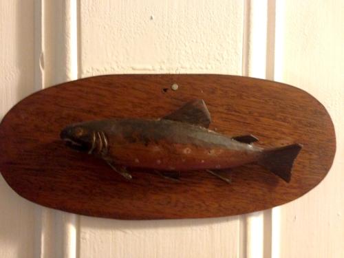 1fishing.jpg