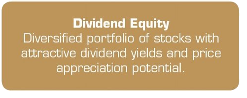 Divident Equity