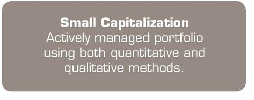 Small Capitalization