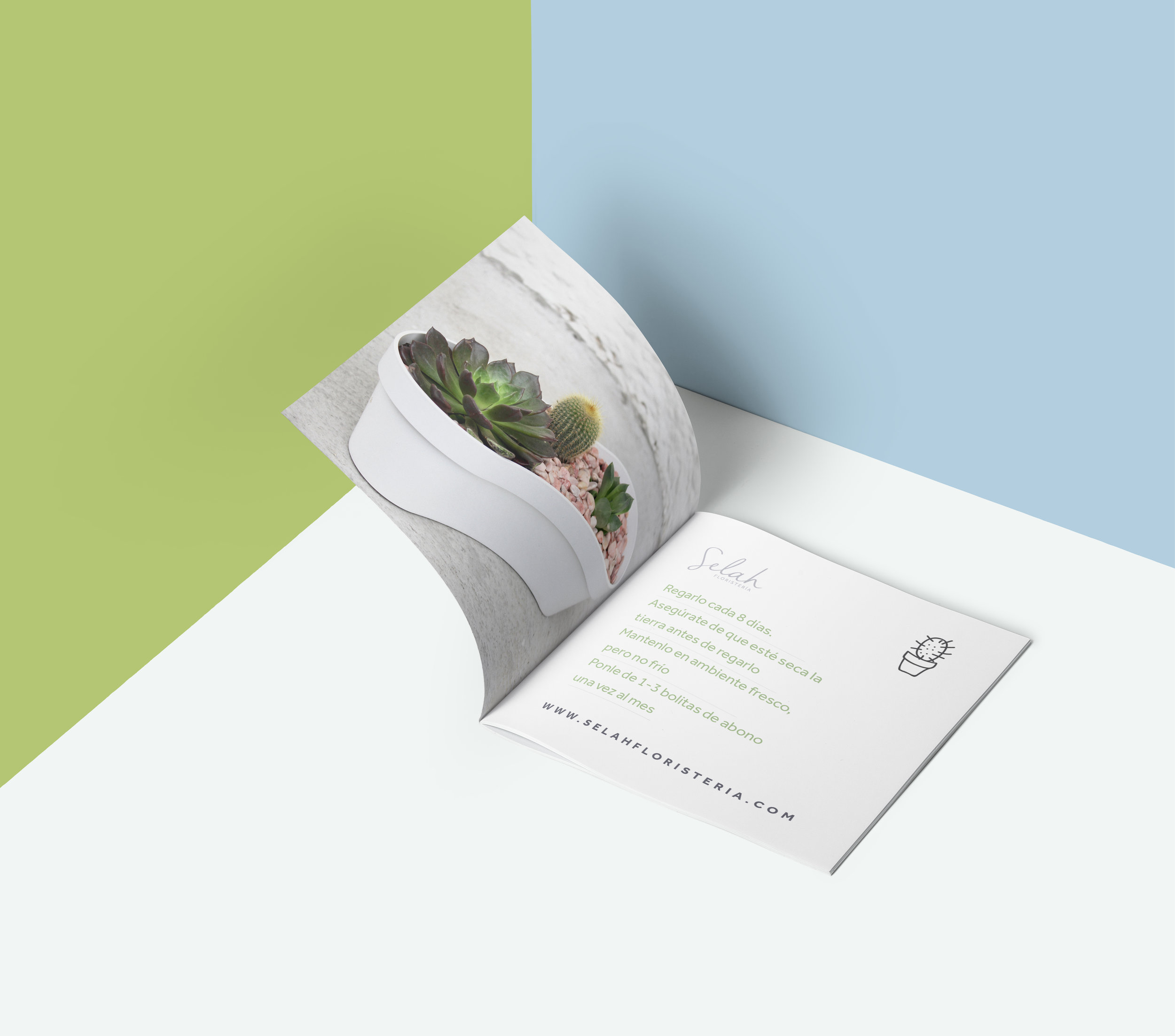 MG_Mockup_Brochure_Selah_Cactus.jpg