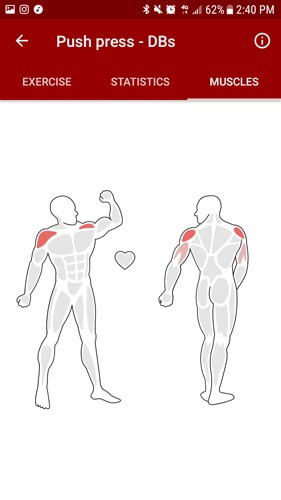 MPC Fitness App Muscle Diagram.jpg