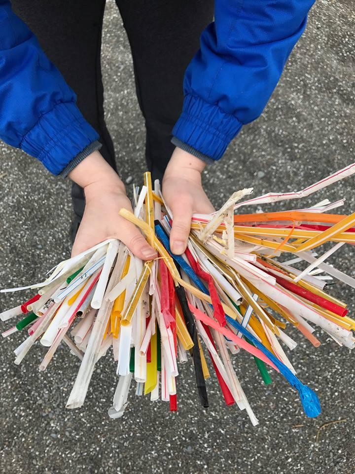 Single-use straws picked up off one beach in Hamilton, Ontario.