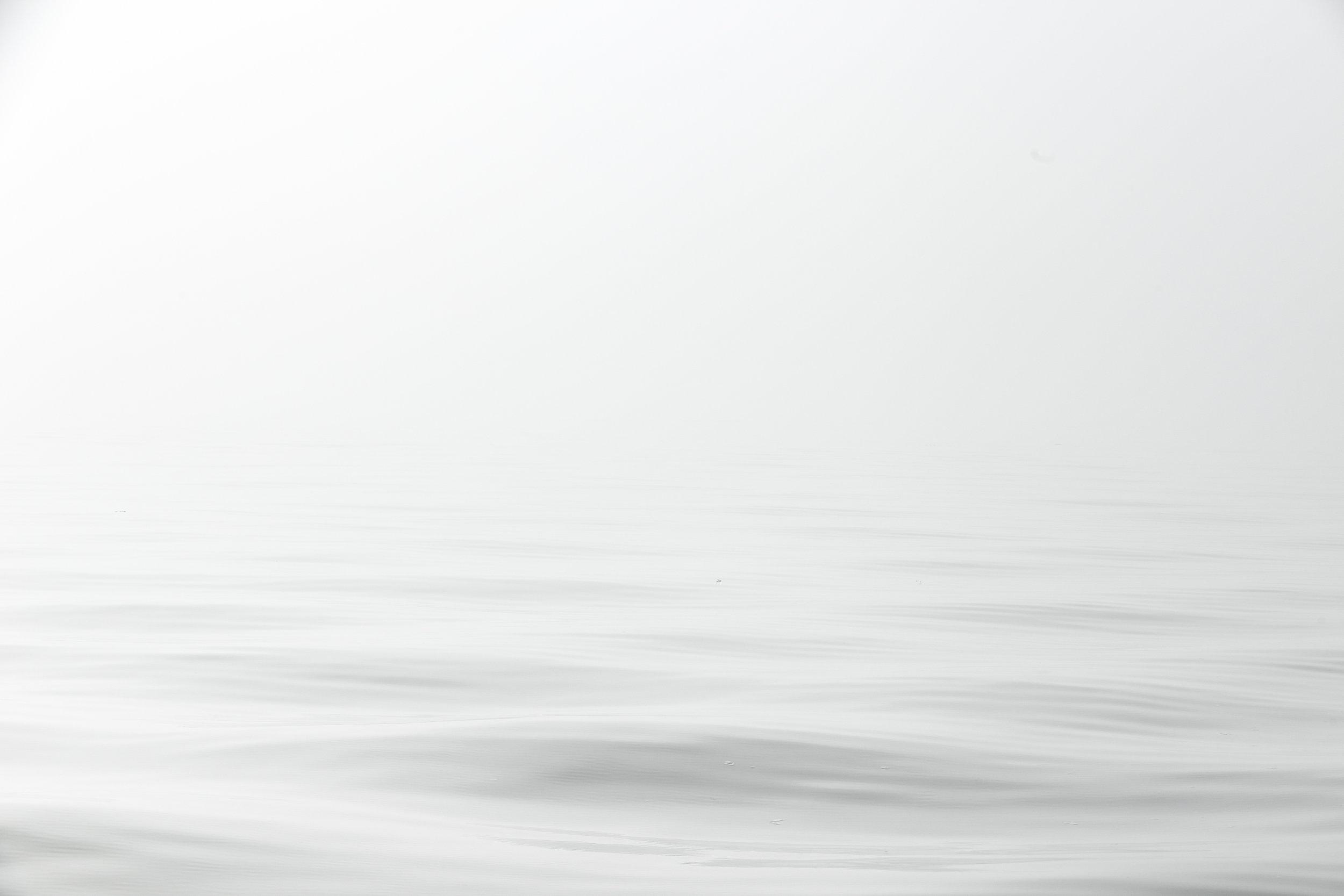 FoggyLakeMorning_1.jpg