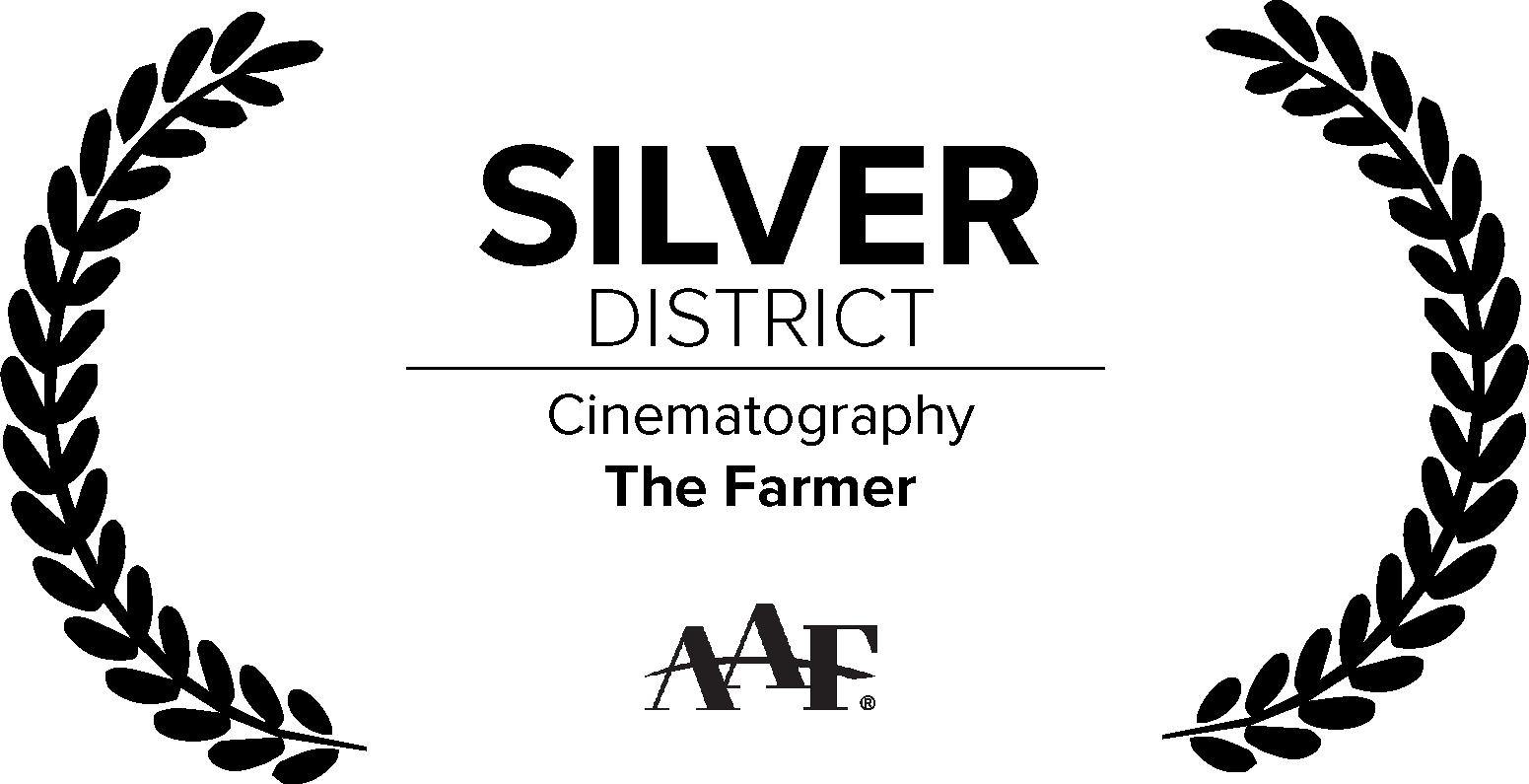 AAF_Silver_Cine@3x.png