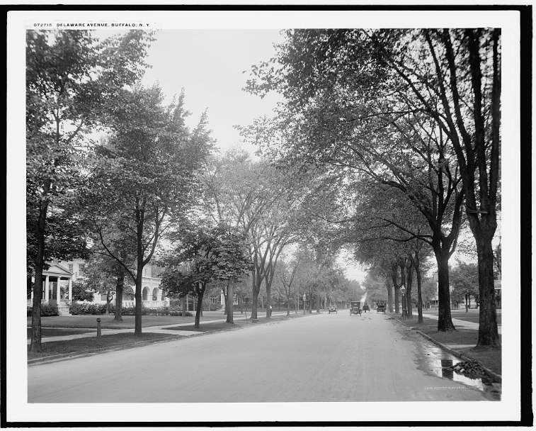 Delaware Avenue, Buffalo, Detroit Publishing Co., c. 1910-1920, Library of Congress Prints and Photographs Division
