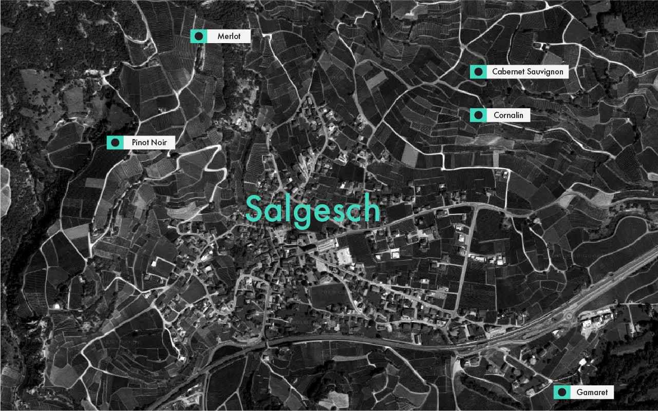 Salgesch Map.jpg
