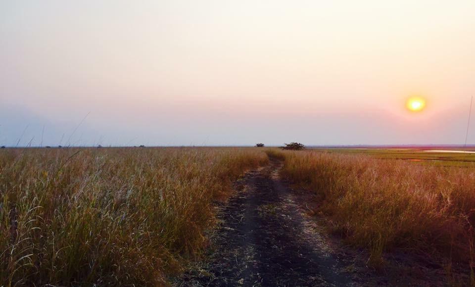 Sundowner - Gorongosa National Park - Mozambique