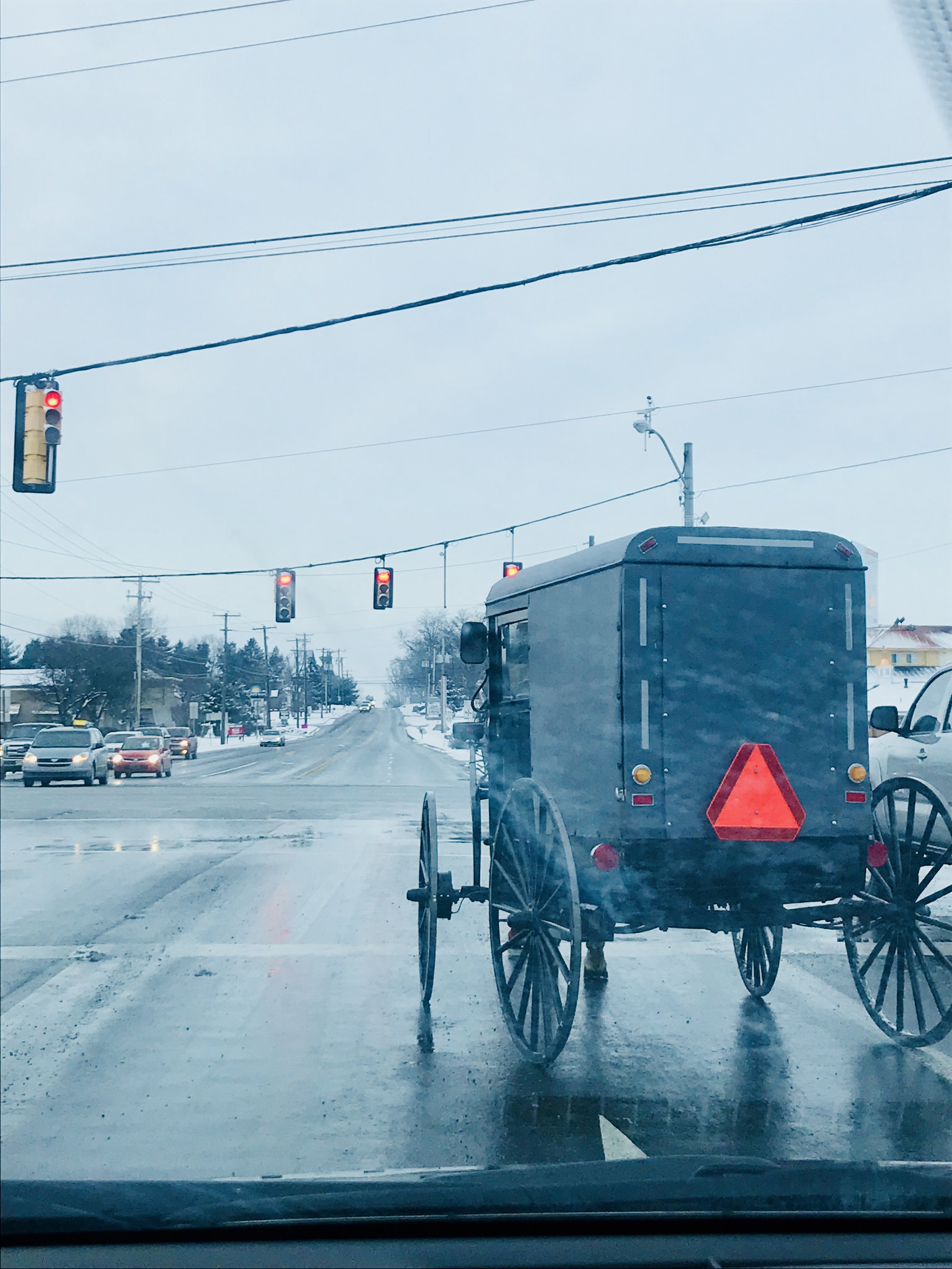 Amish Buggy - Lancaster County PA