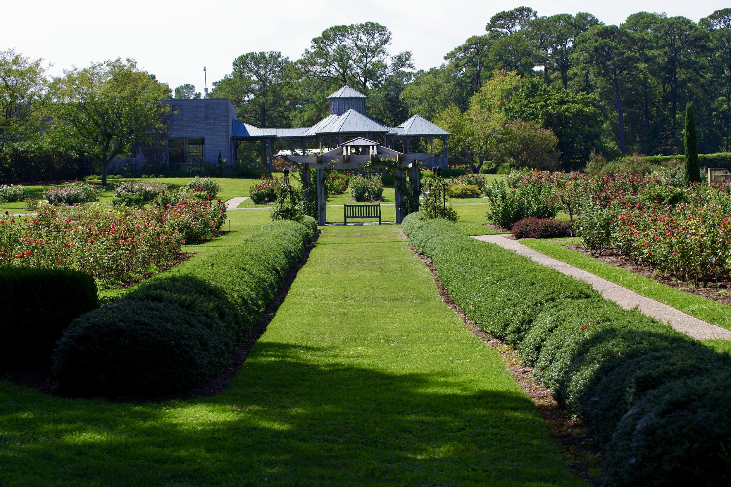 Rose Garden at the Norfolk Botanical Gardens