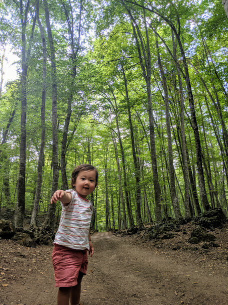 We got some time to walk through the beech forest too.