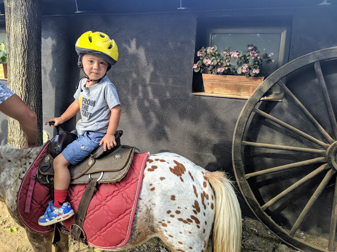 It was a long wait for a very short pony ride, but it was probably the highlight of Lewis's day.