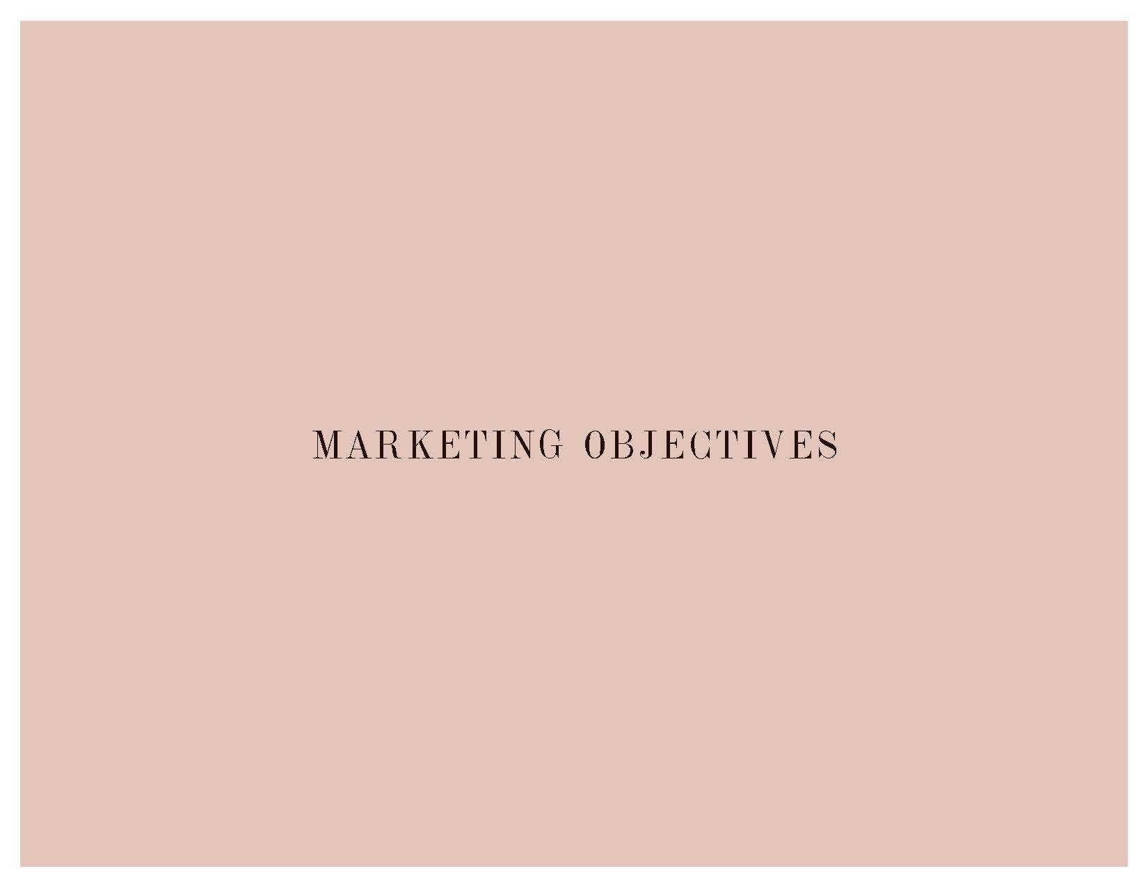 EFL_Marketing_Plan_110118_Page_21.jpg