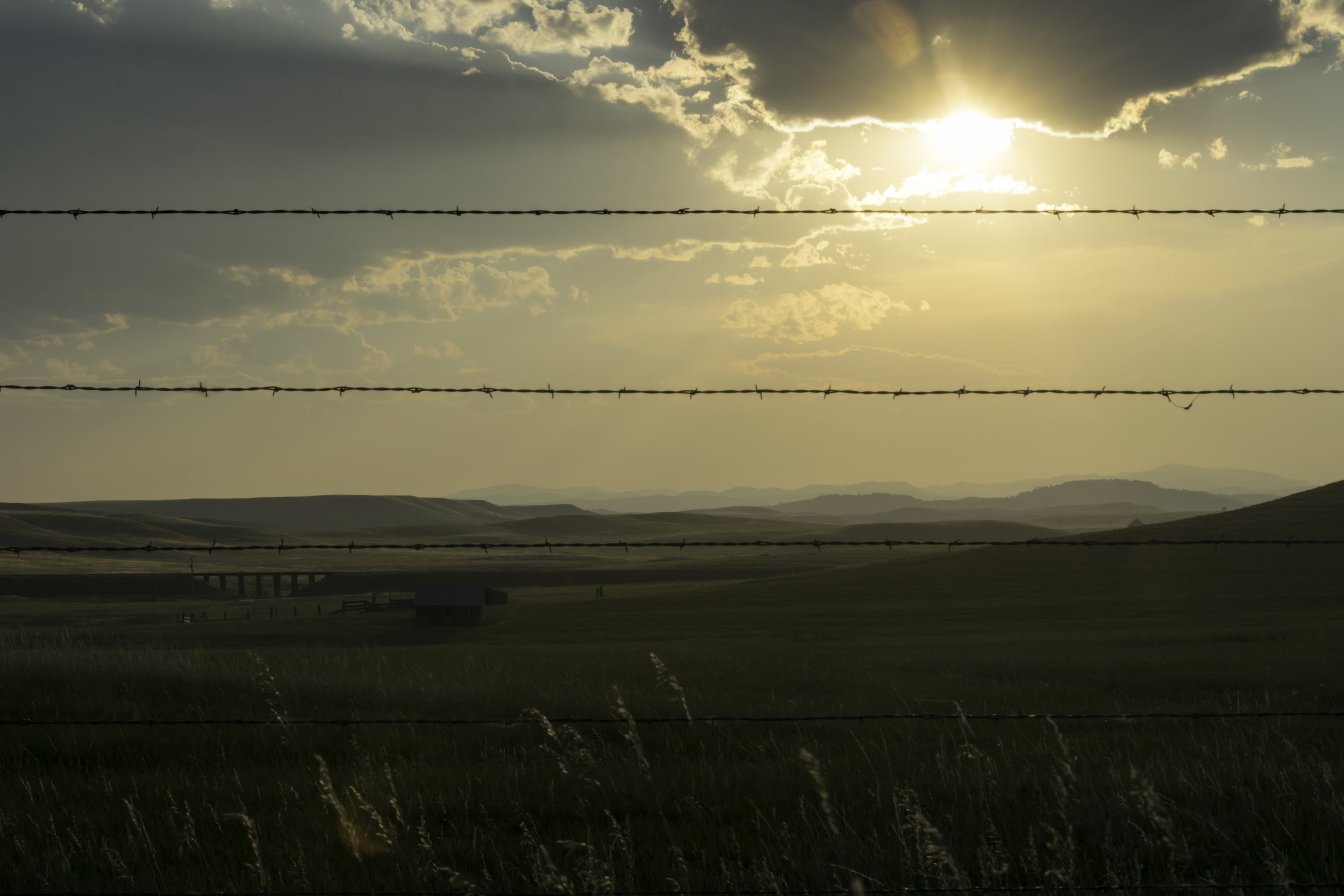 Barbed Wire Sunset.jpg