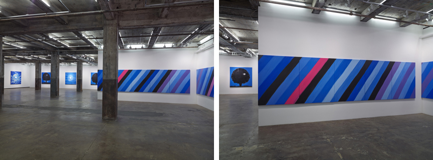Ann Craven at Maccarone Gallery, New York, 2013, installation view. Courtesy Ann Craven Studio and Maccarone, New York.