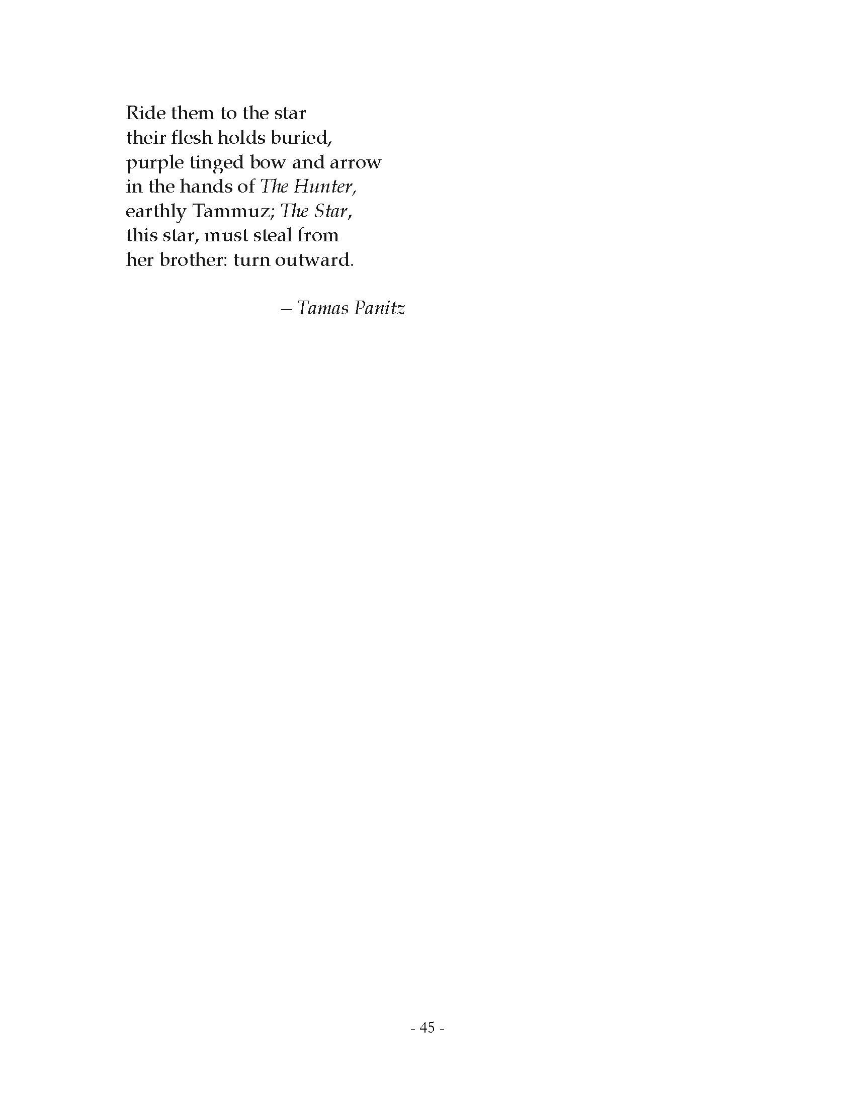 Tamas Panitz Page 45 Published by  Metambesen  Annandale-on-Hudson, 2019