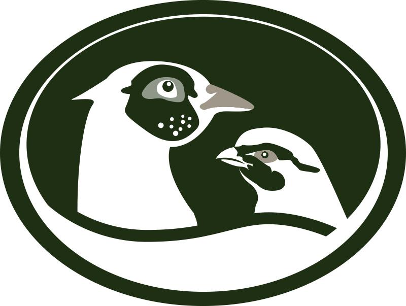 st-clairs-logo No Back.png