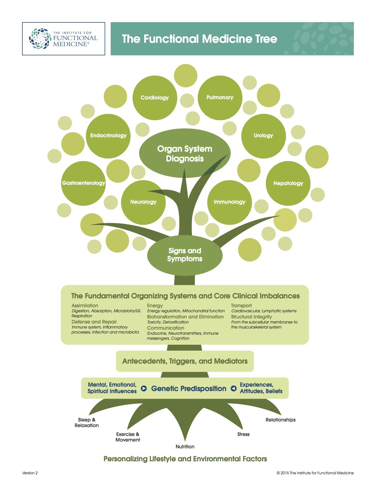 IFM tree jpeg.jpg