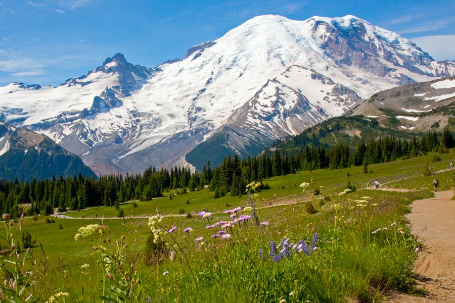 Mount Rainier2.jpg