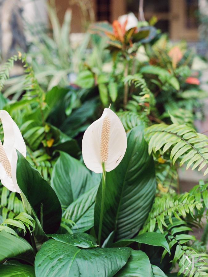 outside wedding garden wedding kristen weaver photo