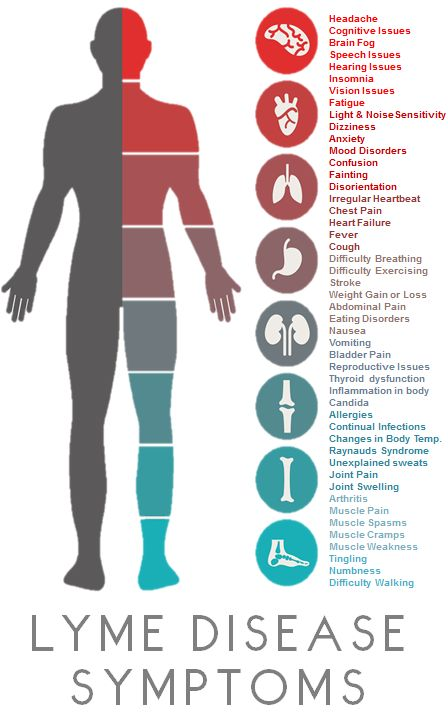 chronic-lyme-disease-symptoms-chronic-illness.jpg
