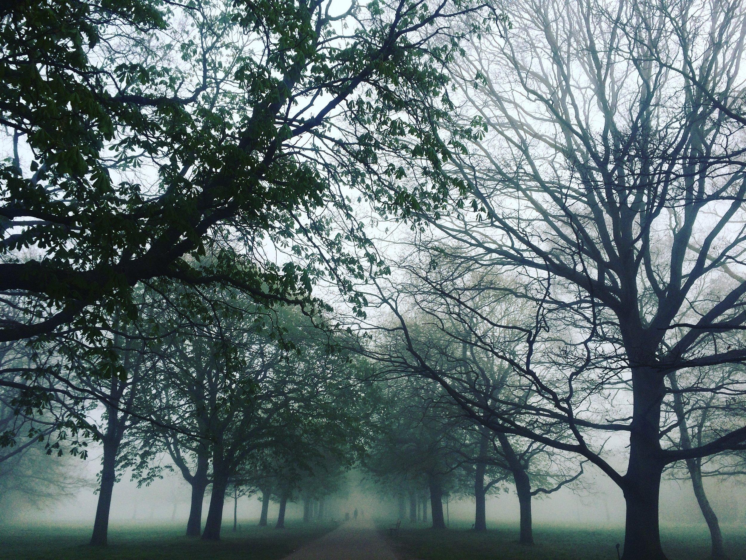 Walpole Park.jpg