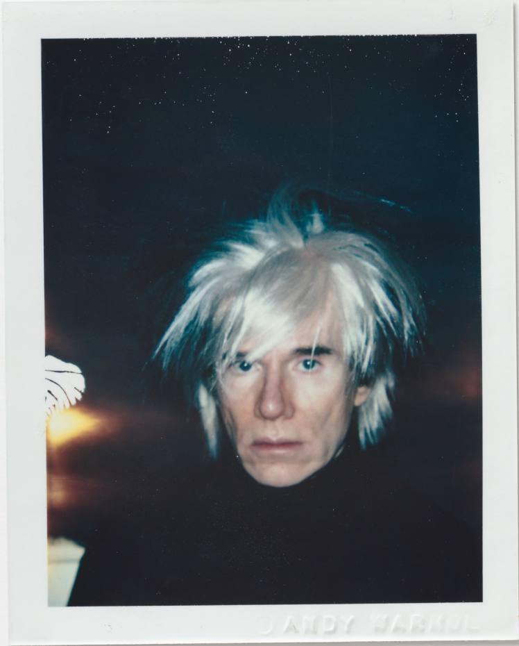 https___s3-eu-west-1.amazonaws.com_htsi-ez-prod_ez_images_0_8_7_8_1668780-1-eng-GB_01-Andy-Warhol-Self-Portrait-in-Fright-Wig.jpg