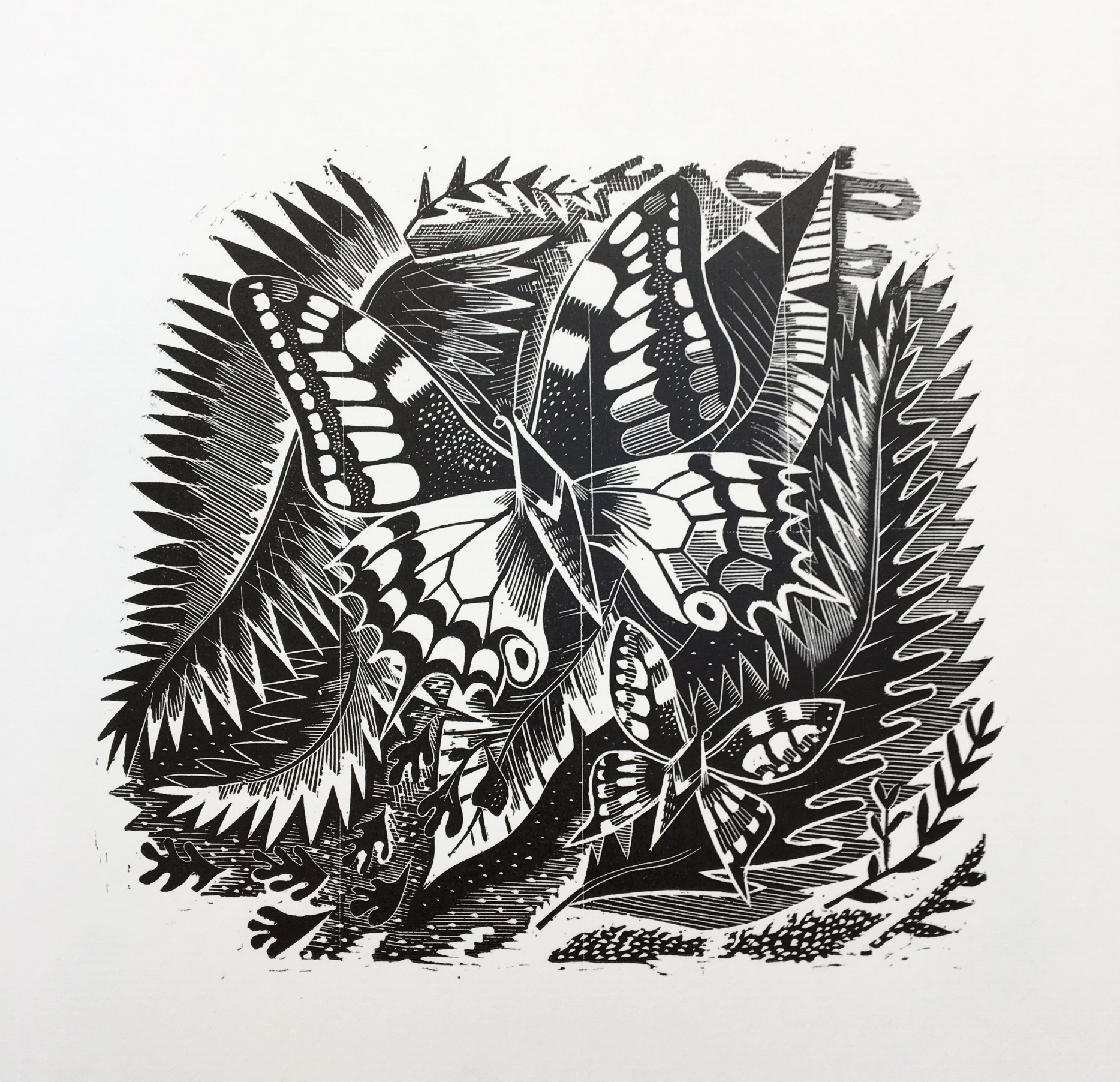 Tropical Butterflies - Wood engraving 14 x 14 cmsAnother memento of Cooper's Caribbean cruise. In later life she made a number of cushions, embroidered in petit point to her own designs. Several of them include butterfly motifs.£120