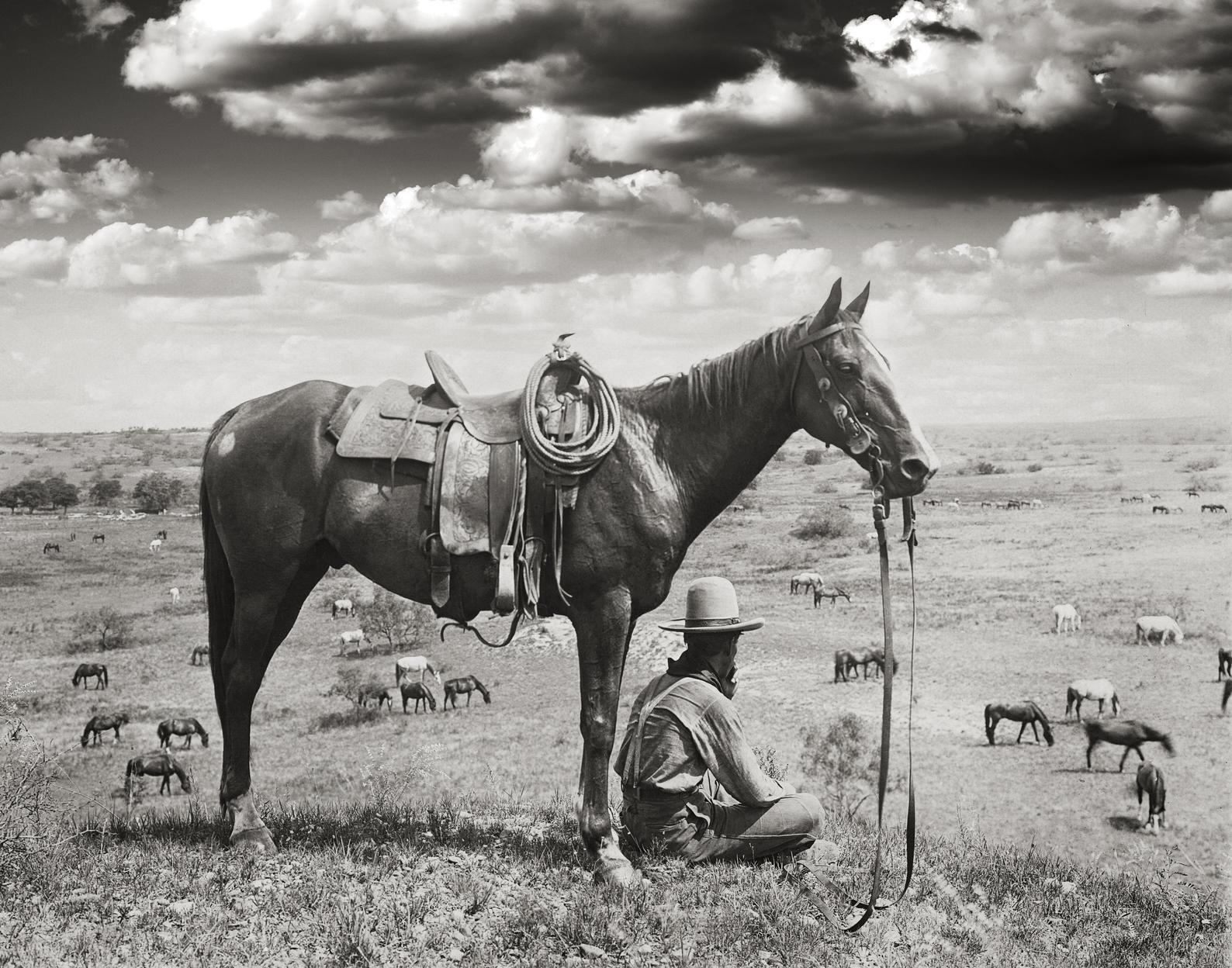 Cowboy Art $32