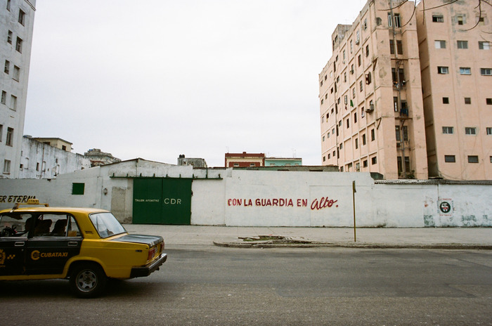 large_Cuba_Culled__024_of_053_.jpg