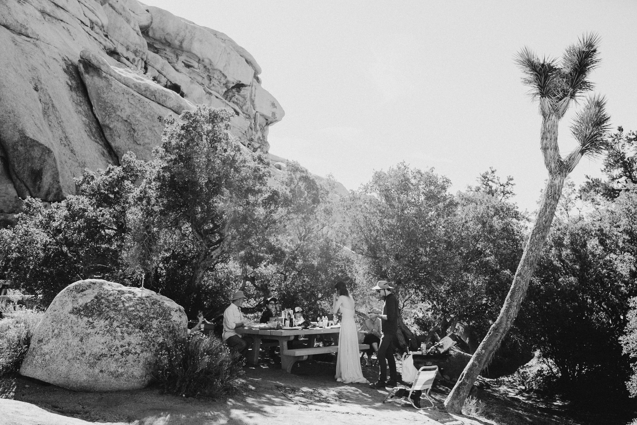 Joshua Tree Final (3 of 69).jpg
