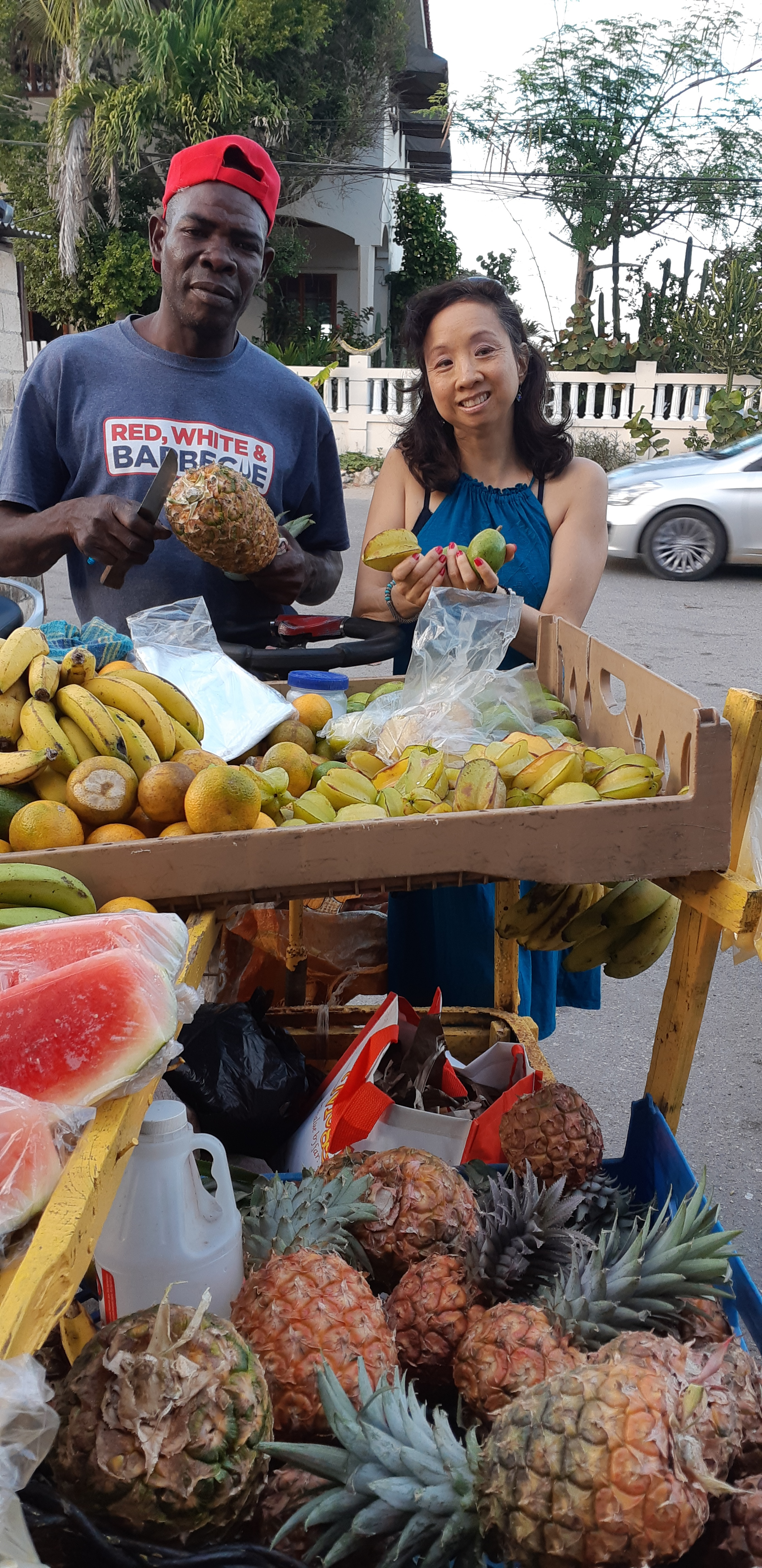 Fresh Local Fruits - are always the best!Enjoy the Juicy Goodness of Pineapple, Mango, June Plums, Oranges, Bananas, Star Apple and the list goes on!