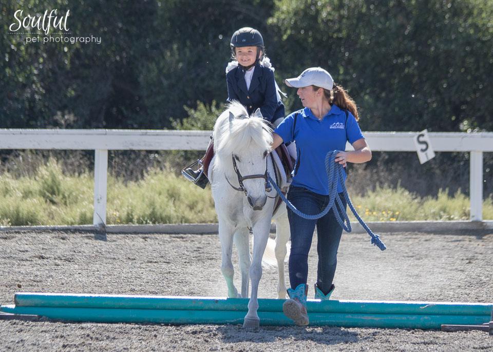 Horses 04 v2.jpg
