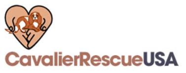 Cavalier Logo Long.png