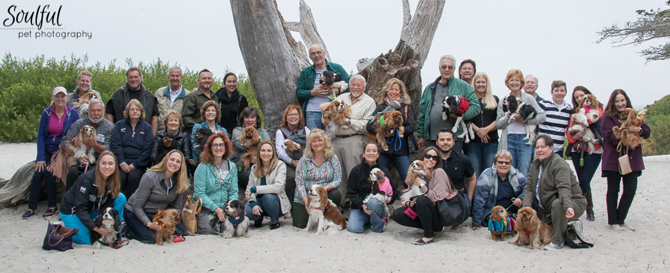 Over thirty people and almost as many dogs attended from across the country.