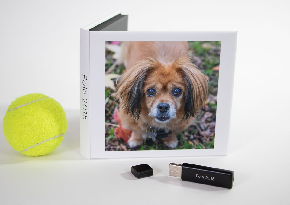 Poki USB with tennis ball.jpg