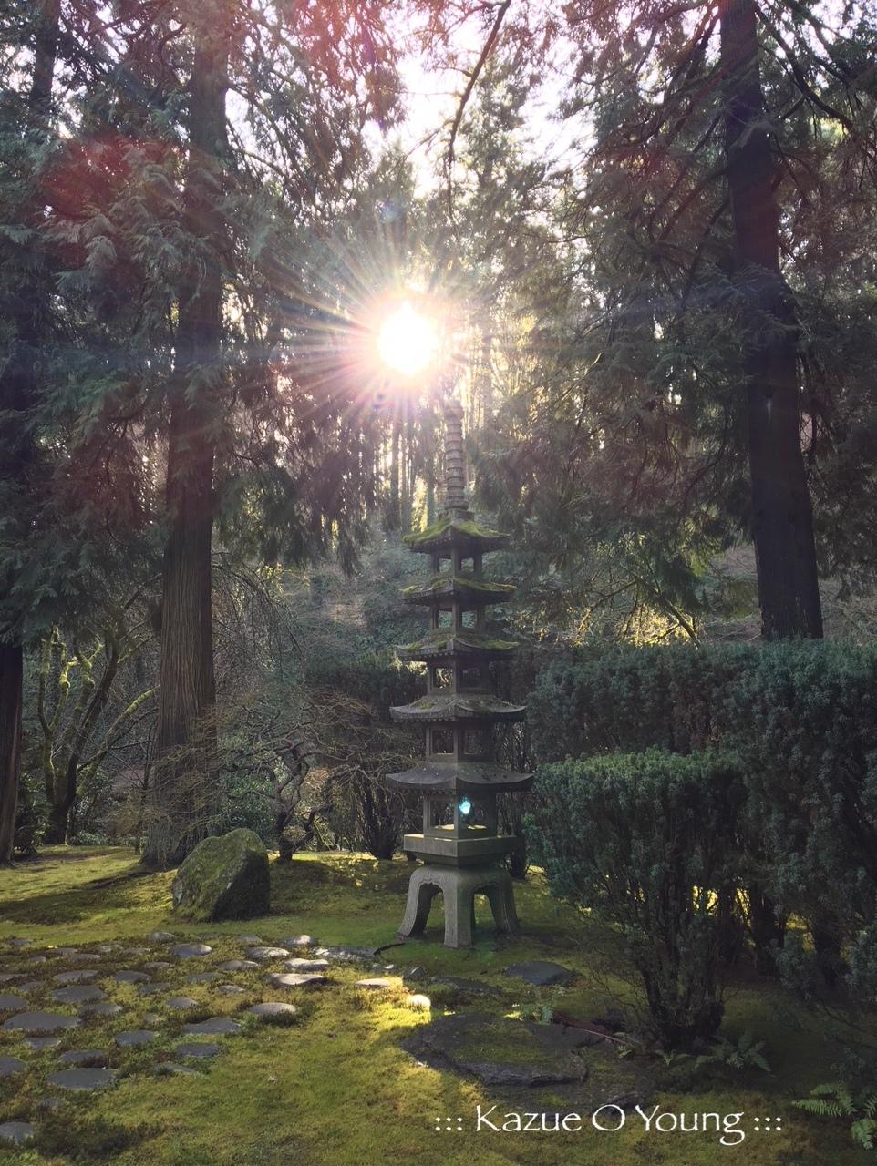 Portland Japanese Garden :::