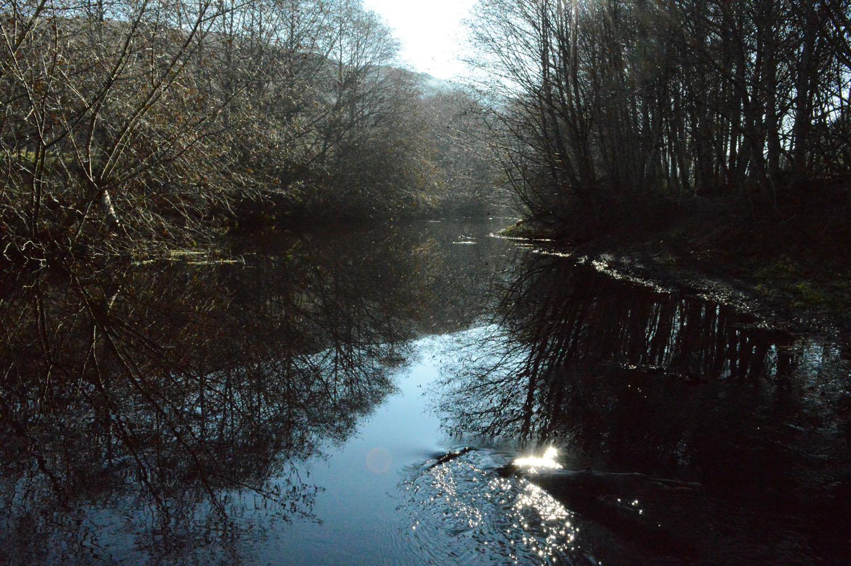 Walker Creek Watershed