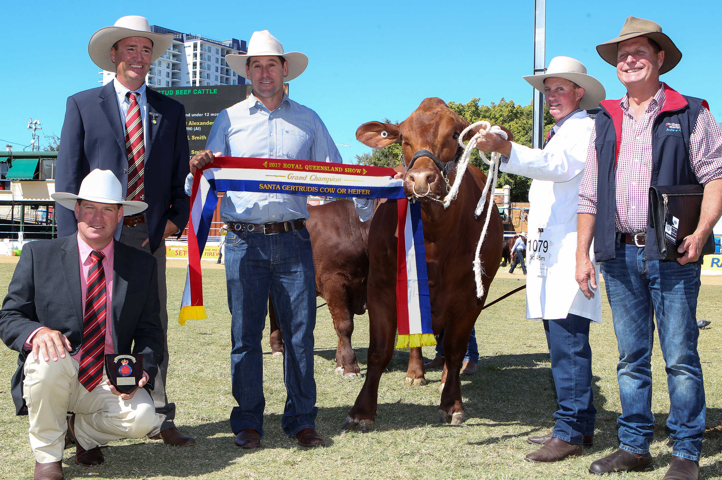 Yarrawonga Escort K425- Grand Champion Cow  awarded the Big S Group trophy and Elders Shield of Excellence. Shield presented by Michael Smith from Elders, with Judge Darren Childs and Andrew Bassingthwaighte, Trophy presented by Glen Holt and cow led by Brendan Emery.