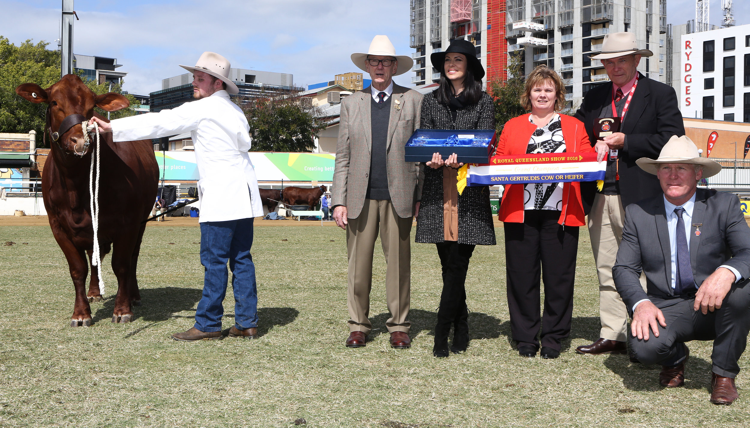 Senior and Grand Champion Cow, Yarrawonga Escort K425 was awarded The Big S Group Trophy presented by Felicity Sham and the Elders Shield of Excellence presented by Blake Munro with Alastair and Fiona Bassingthwaighte and Judge, Ivan Price.
