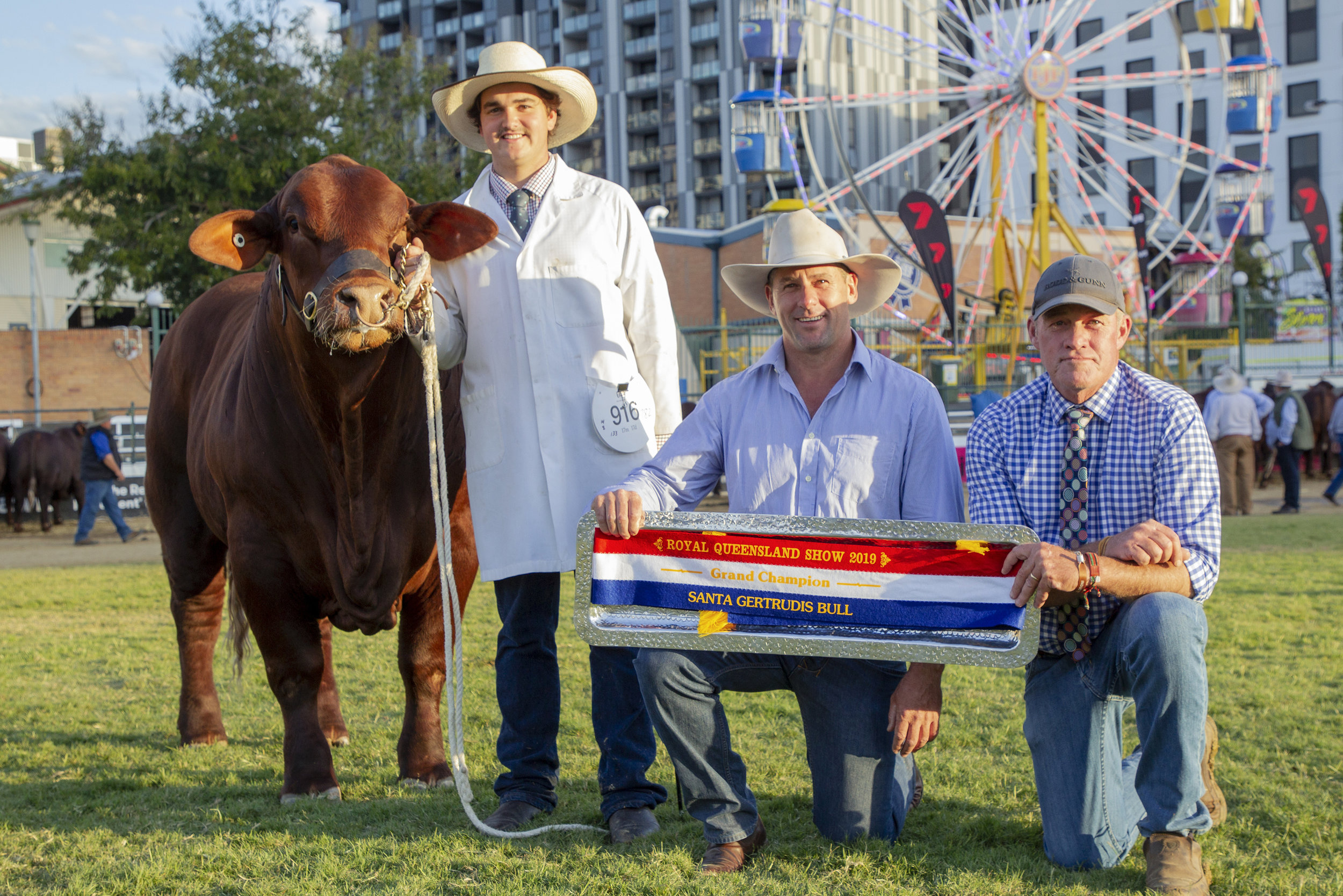 Grand Champion Bull, Yarrawonga Invictus (P) with Andrew Bassingthwaighte receiving the Glenn Oaks Trophy presented by Scott Ferguson.